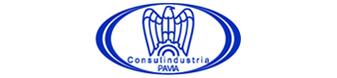 consulindustria_pavia